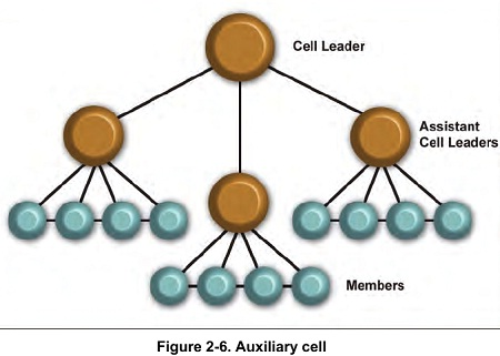Figure 2-6. Auxiliary cell