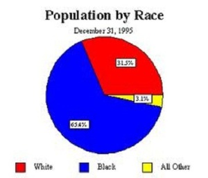 North Carolina Population by Race