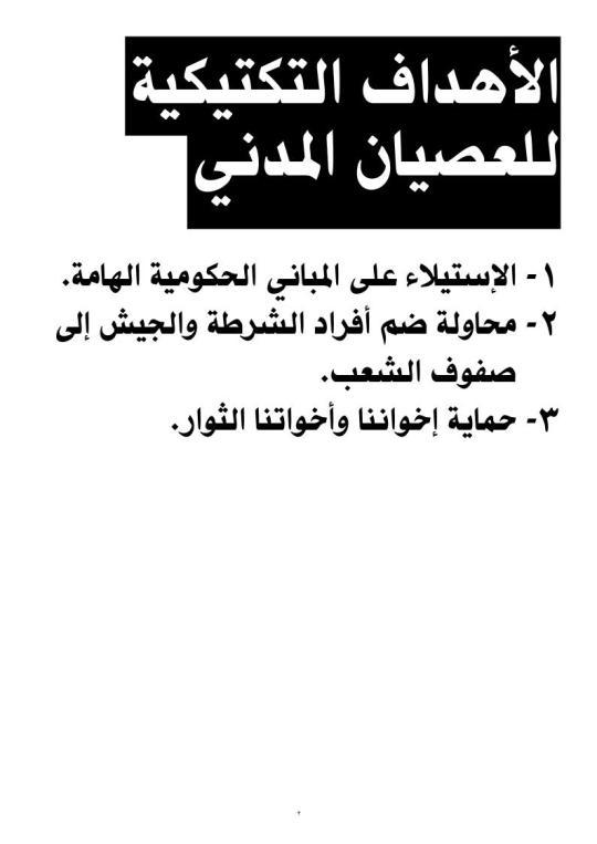 thawra2011_lo_03