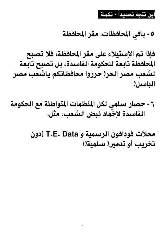 thawra2011_lo_09
