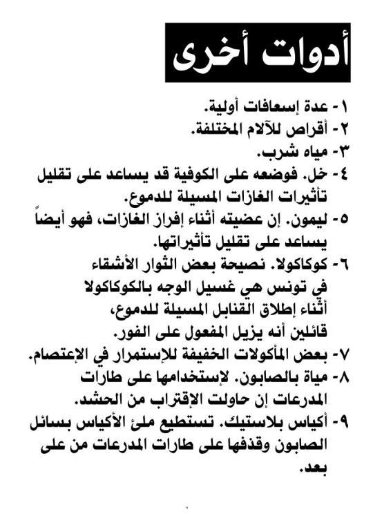 thawra2011_lo_11