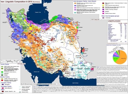 iran_languages_2014_lg-small