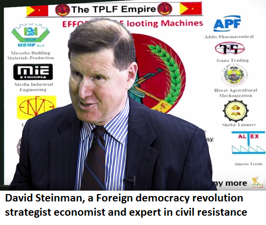 David Steinman, a foreign democracy revolution strategist economist and expert in civil resistance