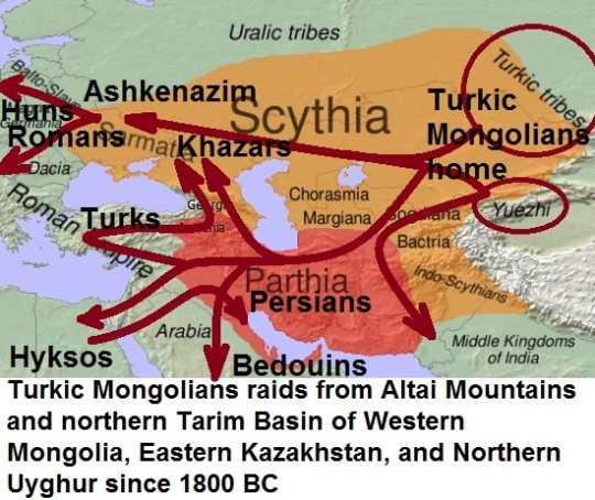 the Turkic Mongolian groups